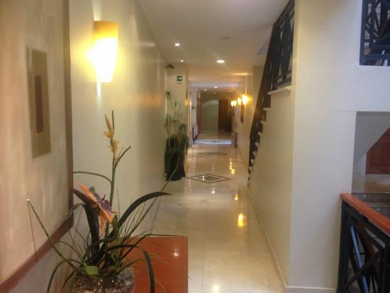 Hotel Magno: Pasillos
