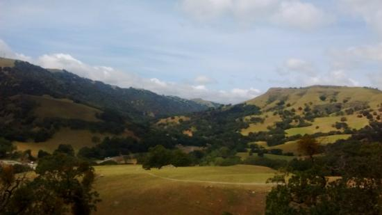 Sunol Regional Wilderness: Canyon Trail View