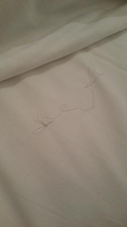 City Best Hotel Limited: thick black hair on the bed
