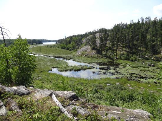 McGillivray Falls Self-guiding Trail: Macgillary Falls trail