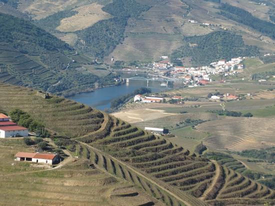 Jorge Barefoot - Wine & Tours: Pinhão view from Quinta de Ventozelo