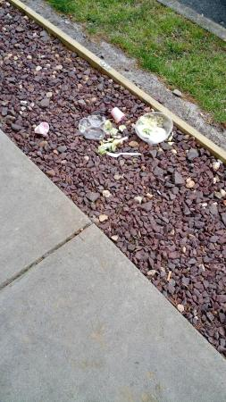 Red Roof Inn Virginia Beach : Trash outside