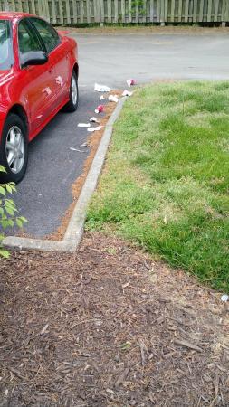 Red Roof Inn Virginia Beach : Trash all over grounds