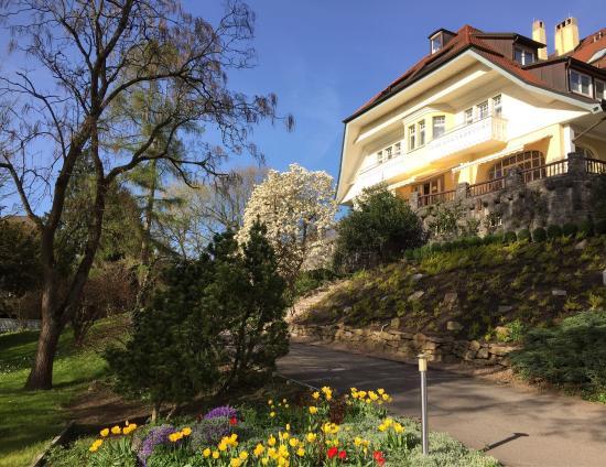 Villa Elben: .....wie ein Gemälde!