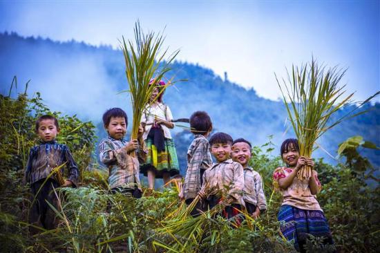 Yen Bai Province, Vietnam: Tung Beng Travel photography in Viet Nam- Hang Te Cho, Yen Bai (