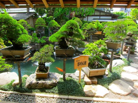 春花园 BONSAI 美术馆