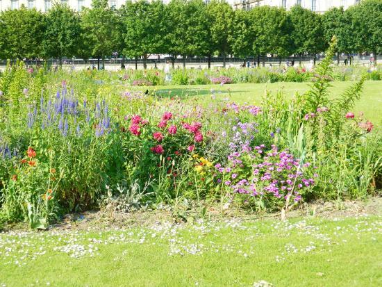 Grand bassin rond picture of jardin des tuileries paris tripadvisor - Grand bassin de jardin ...