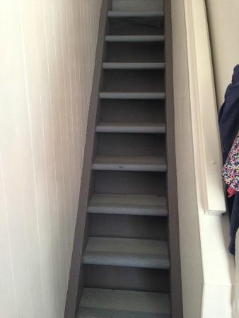 Belambra Clubs - Saint-Martin : Escalier