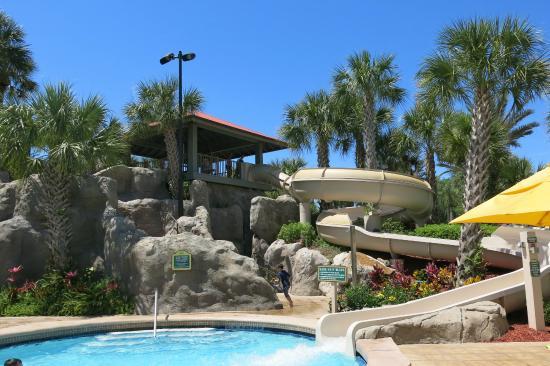 Villas Of Grand Cypress Hyatt Pool