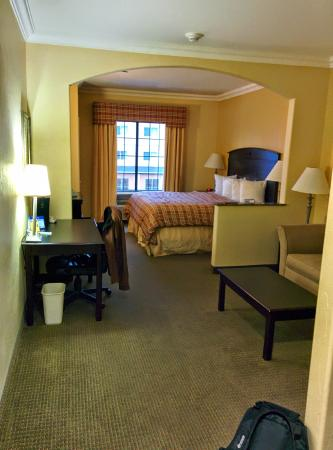 Best Western Plus Barsana Hotel & Suites : View of the suite