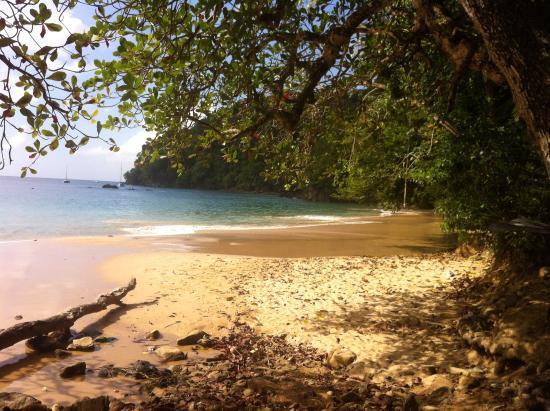 Charlotteville, Tobago: Pirates bay, stunning!