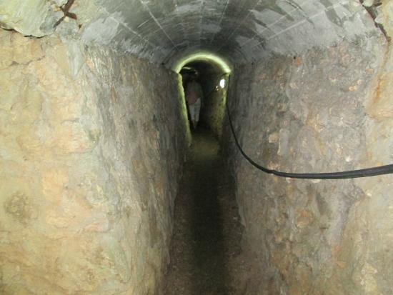 Hotel Nacional de Cuba: Tunnel in garden