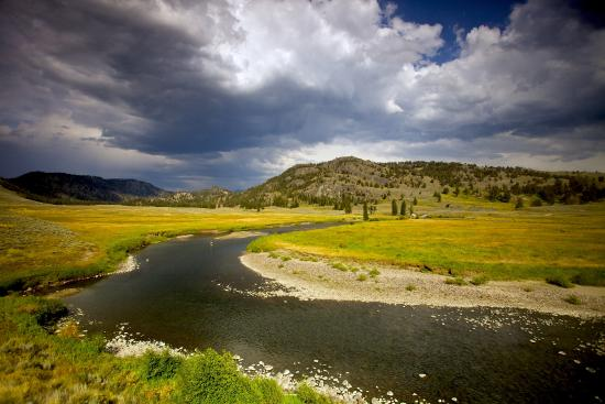 Émigrant, MT : Guided trips into Yellowstone National Park