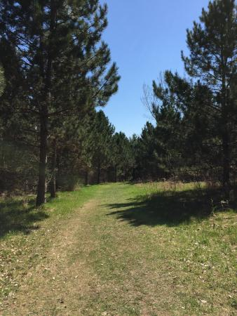Lebanon Hills Regional Park: One of the trials