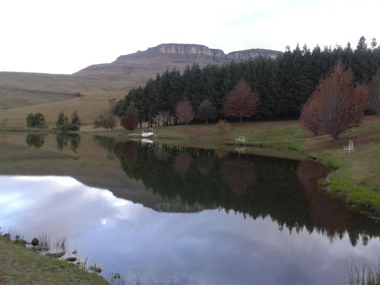 Silver Hill Lodge: a tranquil place to stay