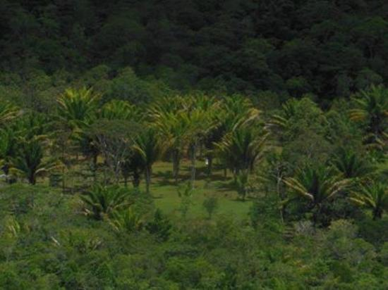 Hotel WakuPata : Area Jardines imagen 4