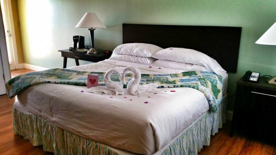 Edgewater Inn: our cute bed