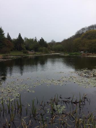 Hilton Court Gardens: Beautiful view of the lake
