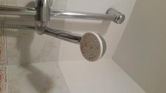 Ibis Styles Milano Centro : Dirty Shower