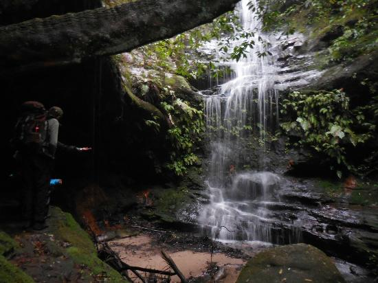 Aboriginal Blue Mountains Walkabout : The grotto