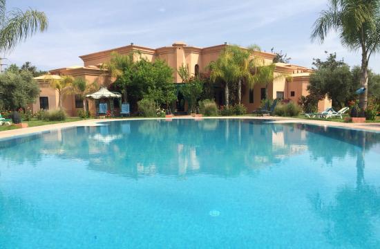 Las Palmeras : The pool and patio area