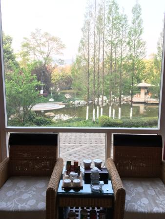 Yijing Garden Resort & Spa Hotel: そとのお庭
