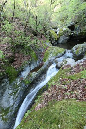 Hyakuhironotaki Falls