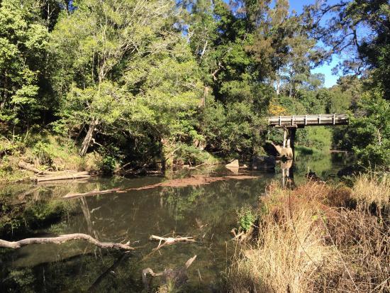 Broken river, platypus bush camp