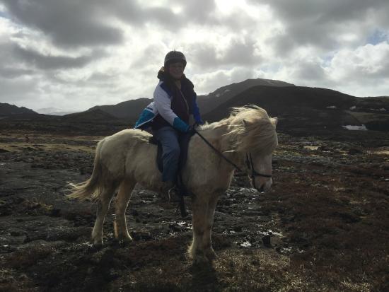 Eld Hestar Horseback Tours : tour of the Lava field