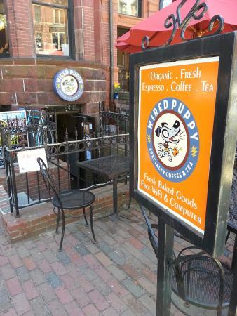 Wired Puppy: Doesn't offer Boston cream pie :-(