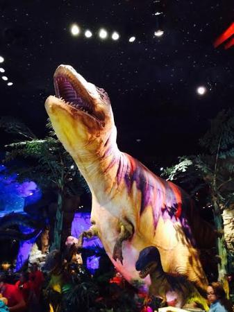 Dino foto di t rex orlando tripadvisor for T rex location