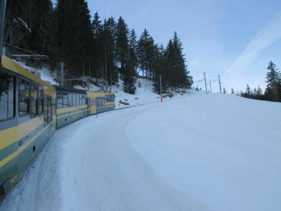 Grindelwald, Ελβετία: วิวระหว่างทางครับ สวยและคลาสสิคครับ