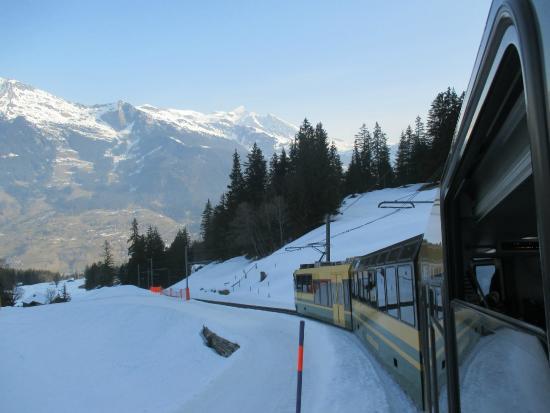 Grindelwald, Ελβετία: ขบวนรถไฟ สาย อนุรักษ์ ที่ สวย ครับ