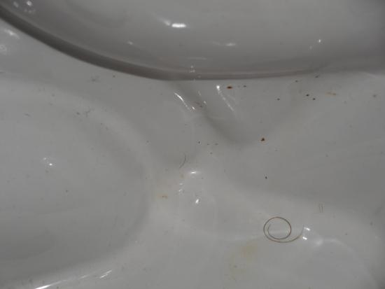 Motel 6 Harrisonburg: pubic hair and feces on toilet base