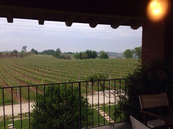 Agriturismo La Casa del Mandorlo: Bella terrazza della camera