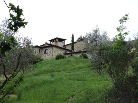 Agriturismo La Busca: foto scattata dal laghetto
