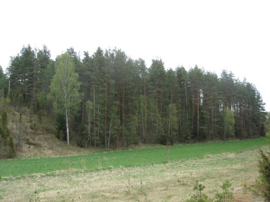 Slagdala Naturreservat