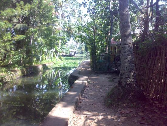 Landscape - Picture of Malayalam Lake Resort Homestay, Alappuzha - Tripadvisor