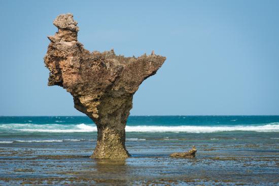 Bongoyo Island: Sights