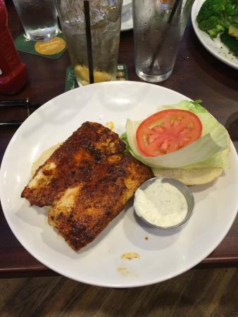 Duffy's Sports Grill : Amazing Blackened Salmon Sandwich