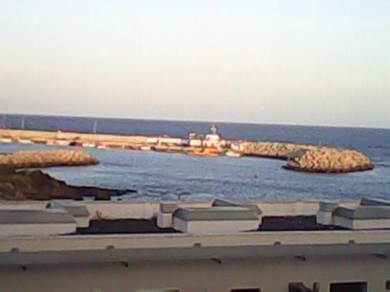 Sun Bay Villas : Marina