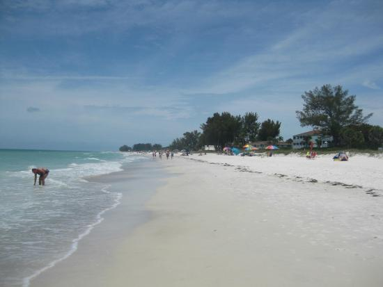 White Sands Beach Resort: View of Holmes Beach