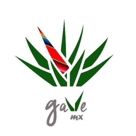 Gave Mx Ibiza