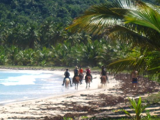 Las Galeras, Den Dominikanske Republik: Riding at rincon