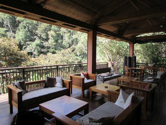Saha Forest Camp