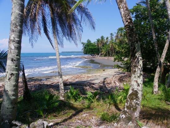 La Casa del Mango: Playa Chiquita is a short walk away
