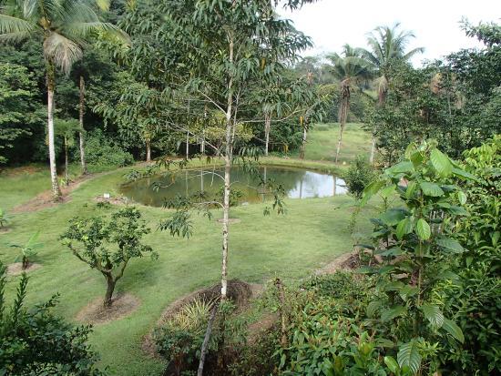 L'Auberge des Orpailleurs : Jardin des Orpailleurs