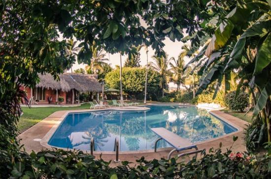 Villa Magnolia B&B: Zona de alberca y jardín