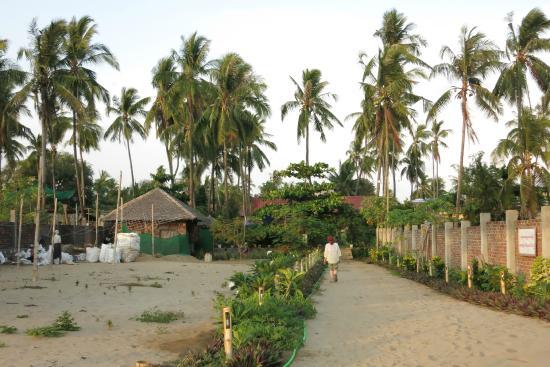 EFR Seconda Casa Beach Resort: Hotelanlage
