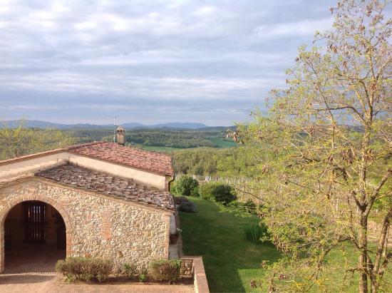 Agriturismo Fattoria Il Piano: Uitzicht vanuit de slaapkamer over de wijnvelden en de heuvels